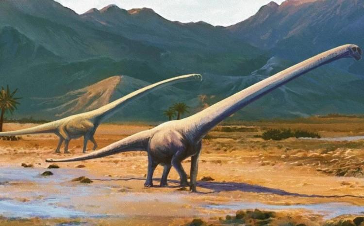 Эркету динозавр