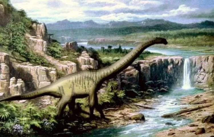 Эвкамерот динозавр