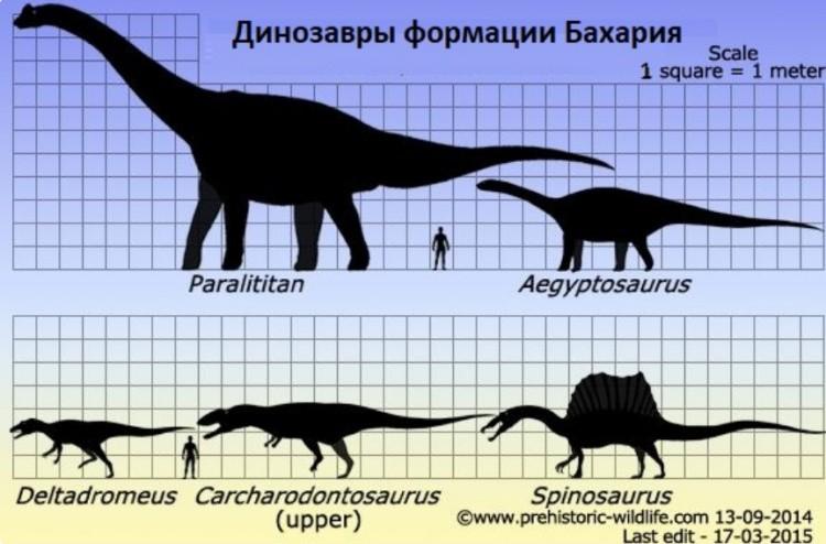 Египтозавр размер