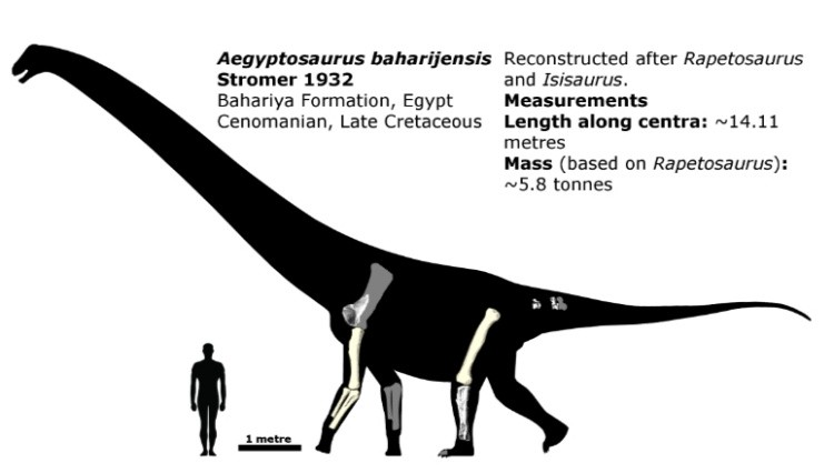 Египтозавр динозавр