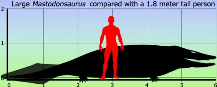 Мастодонзавр размер