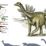 Джайнозавр