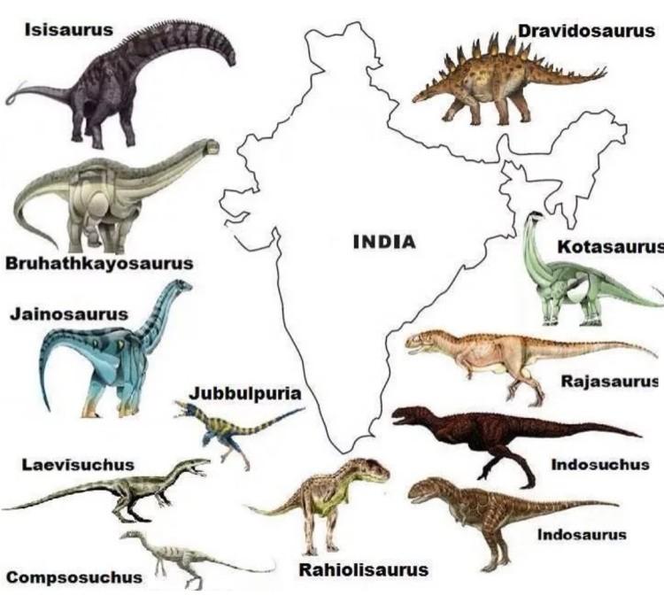 Джайнозавр динозавры