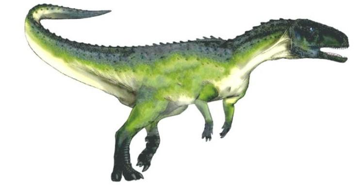 Австрохейр динозавр