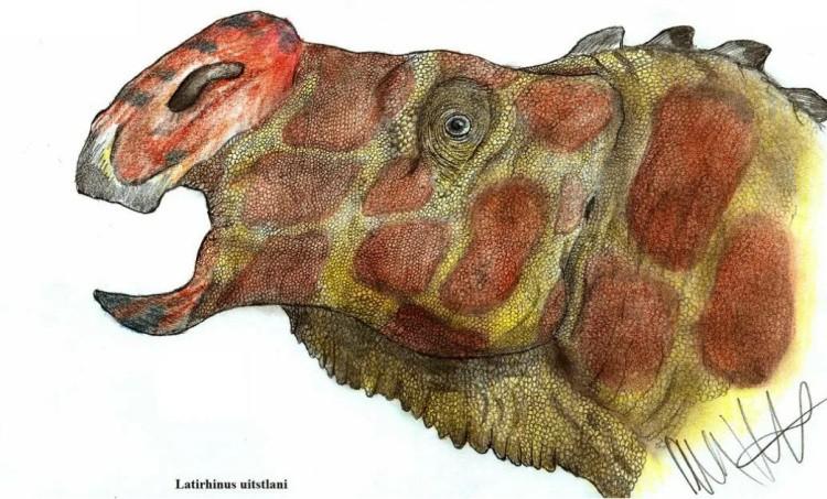 Латирин динозавр